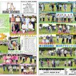 平成29年度グラウンドゴルフ多良木大会