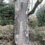 湯前町指定文化財「平野の庚申塔」